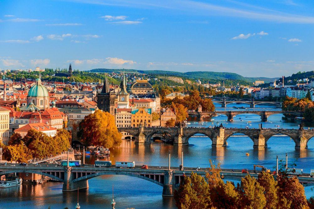 チェコ植物採集  プラハでもやっぱり蚤の市!
