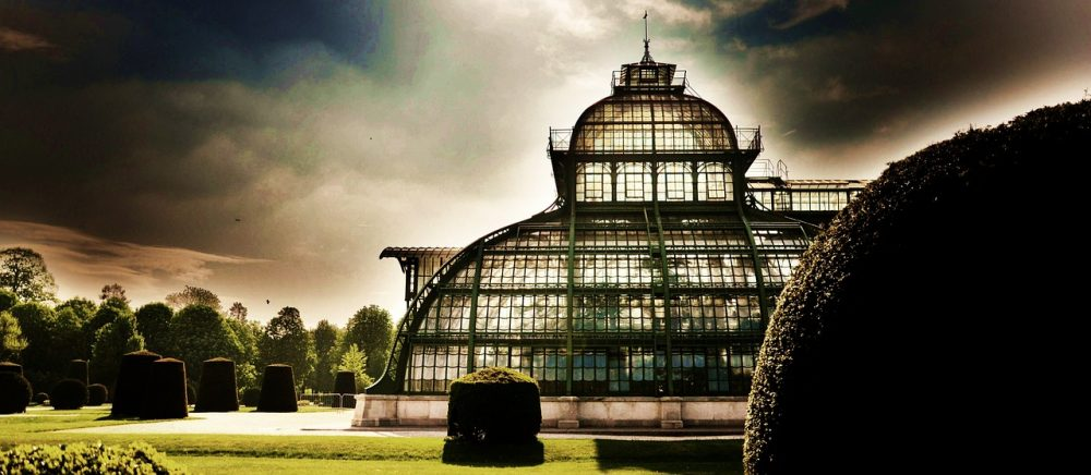 オーストリアウィーンの温室・パルメンハウスと日々の奇跡
